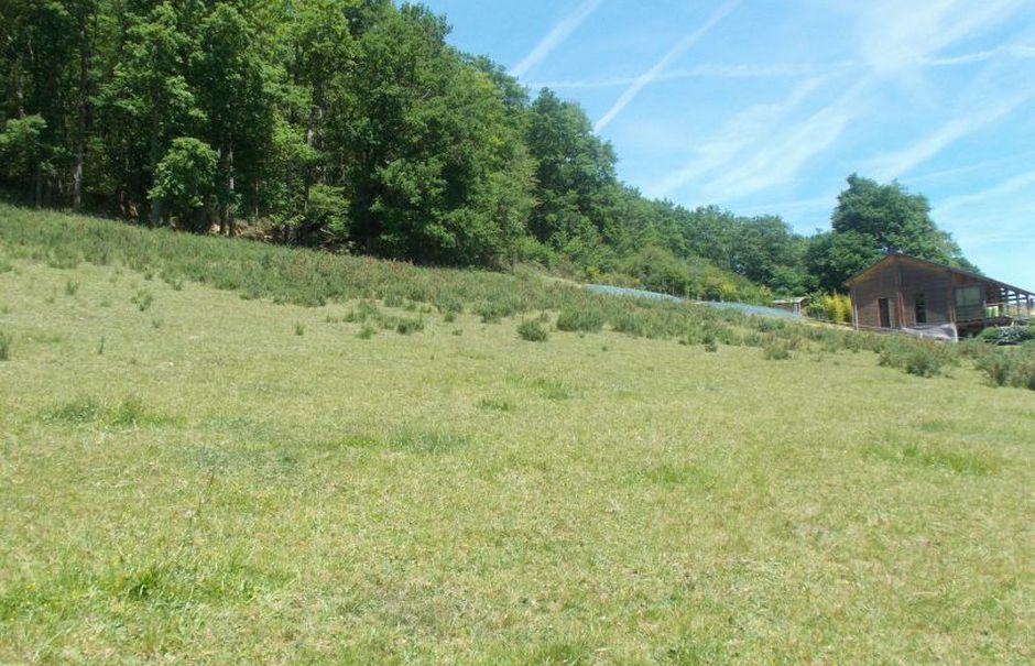Vente terrain  2929 m² à Peyraube (65190), 49 000 €