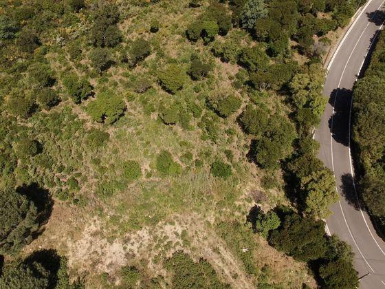 Vente terrain 4212 m2