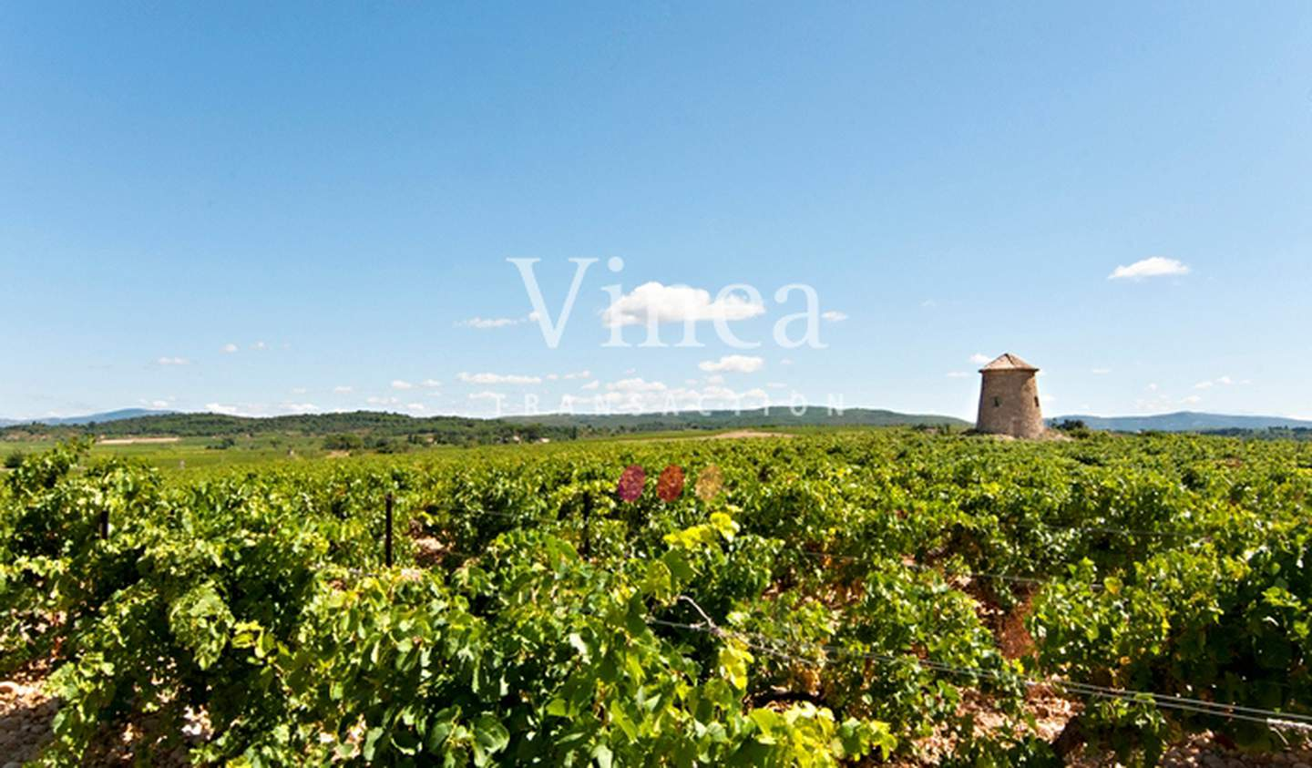 Vineyard with outbuildings Narbonne