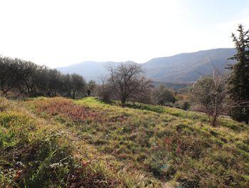terrain à Berre-les-Alpes (06)