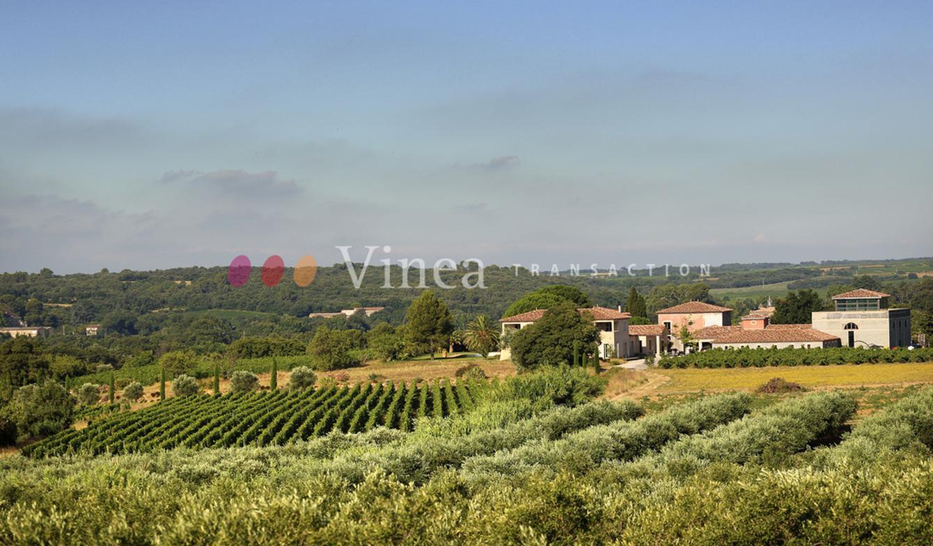 Propriété viticole avec piscine et dépendances Hérault