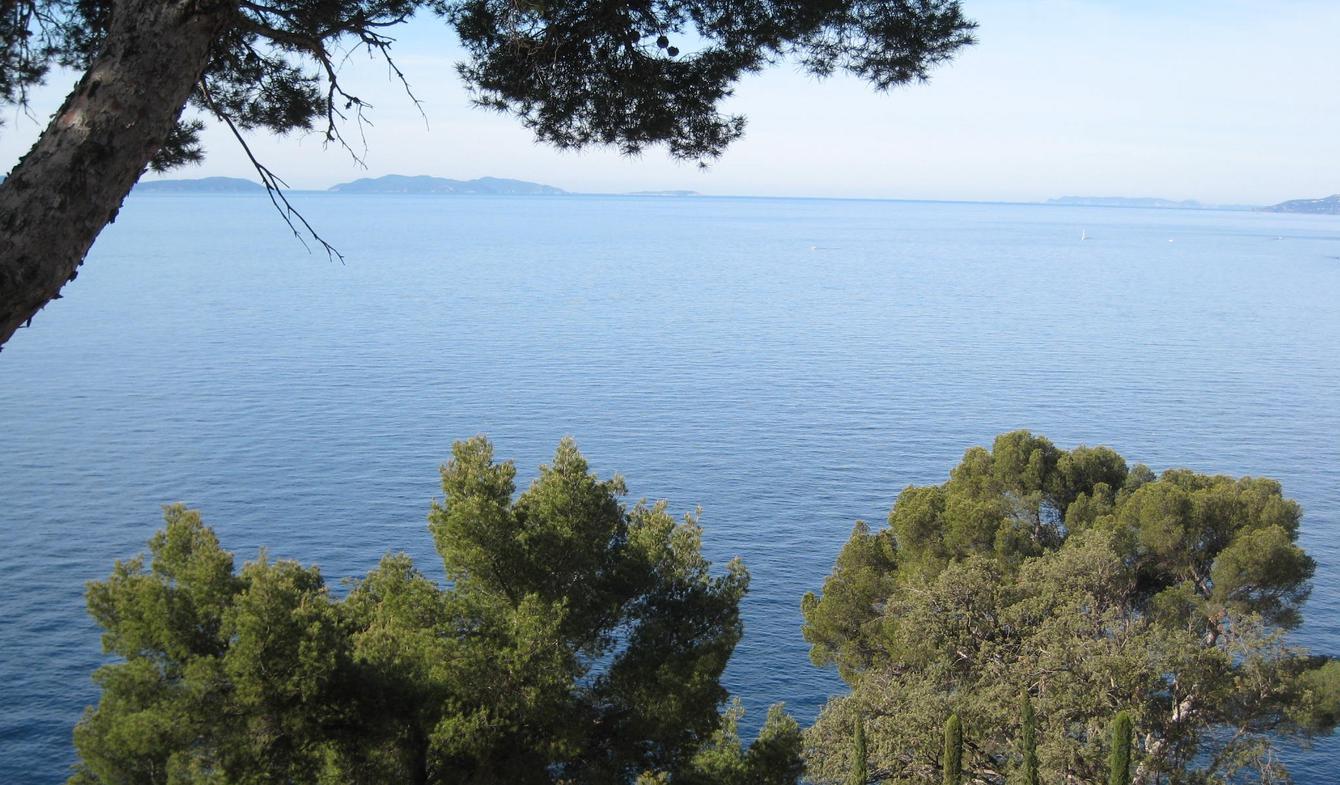 Villa avec piscine en bord de mer Cavalaire-sur-Mer
