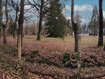 terrain à Combreux (45)