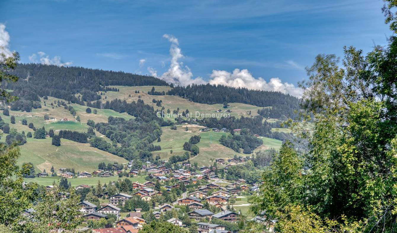 Land and forest Megeve