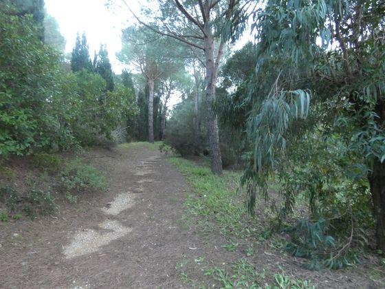 Vente terrain 3004 m2