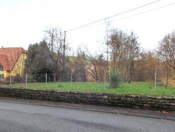 terrain à Wingen-sur-Moder (67)