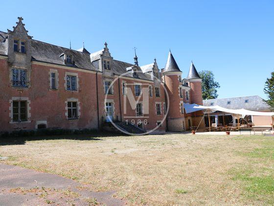 Vente château 30 pièces 1500 m2