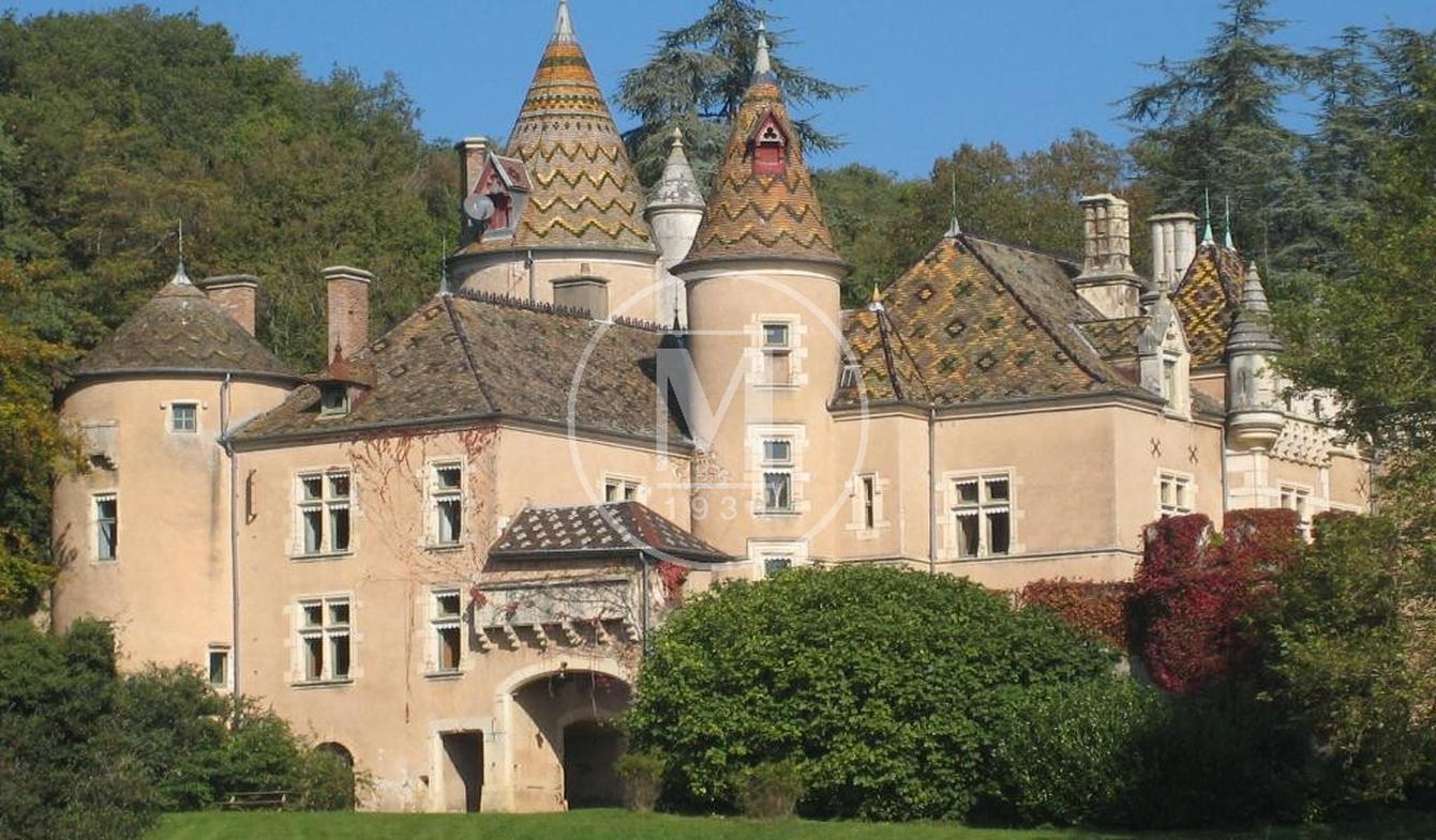 Castle La Chapelle-de-Bragny
