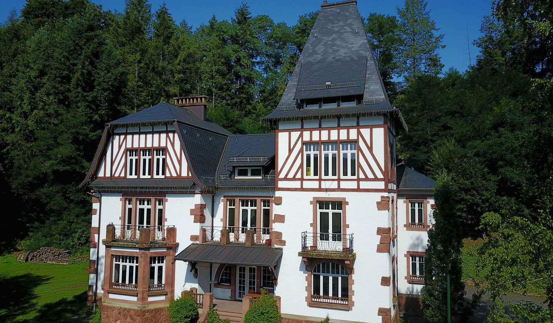 Castle Moselle