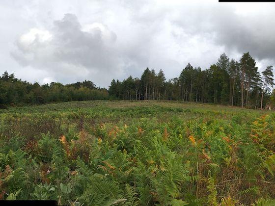 Vente terrain 2000 m2