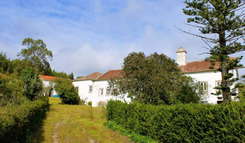 Property Torres Vedras