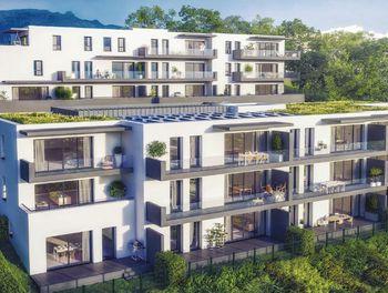appartement à Viviers-du-Lac (73)