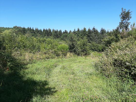Vente terrain 6000 m2