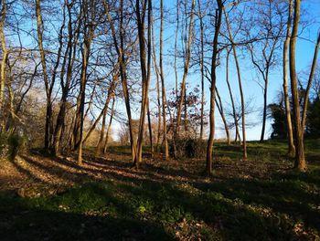 terrain à Les Lèches (24)