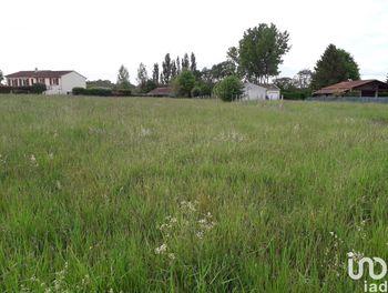 terrain à Saint-Sulpice-de-Cognac (16)