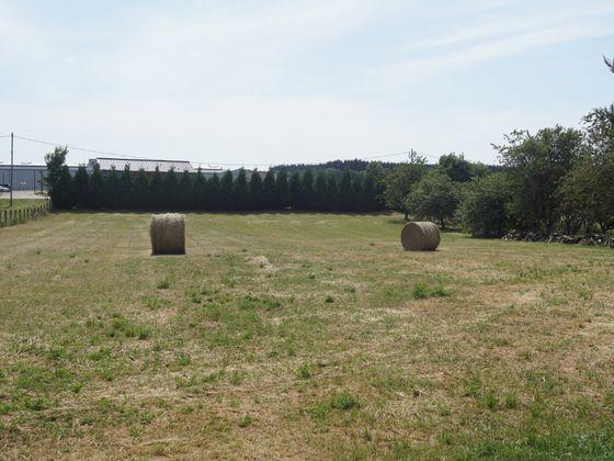 Vente terrain 5000 m2