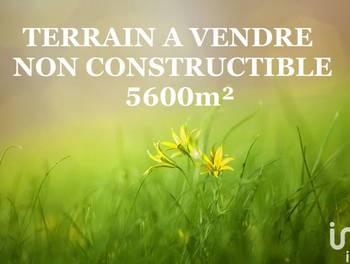 Terrain 5696 m2