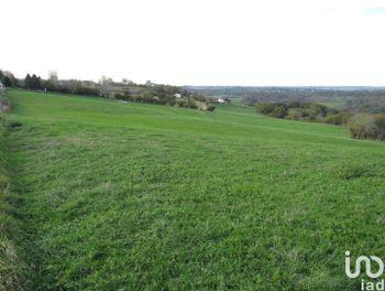terrain à Sauveterre-de-Béarn (64)