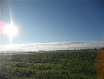 terrain à Ugnouas (65)