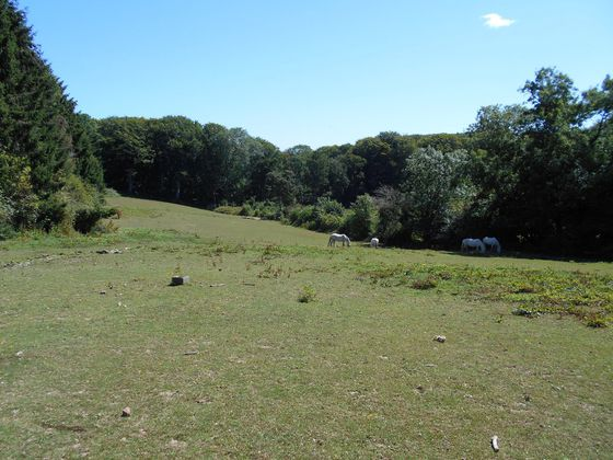 Vente terrain 12800 m2