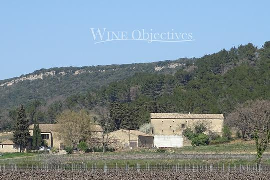 Vineyard with outbuildings