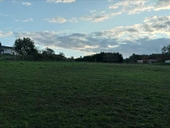 Vente terrain 2751 m2