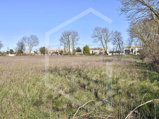 Vente terrain 1431 m2