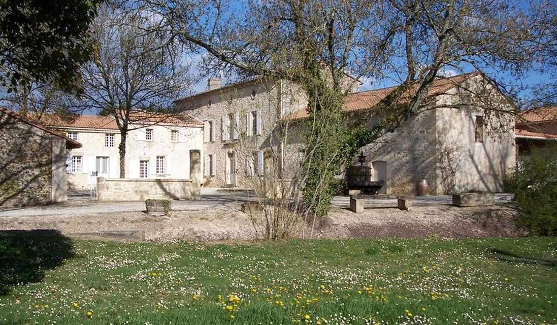 Vignoble avec piscine et dépendances Saint-Emilion