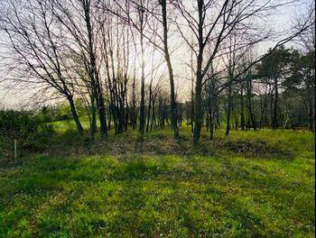 terrain à Cassagnes (46)