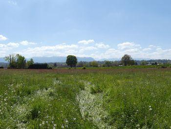 terrain à Pontacq (64)