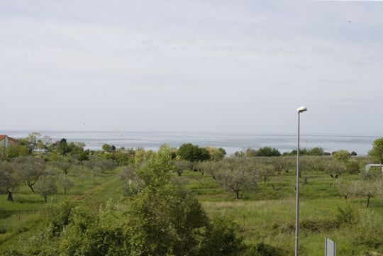 Seaside ground  with panoramic view