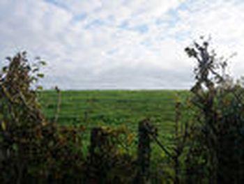 terrain à Romenay (71)