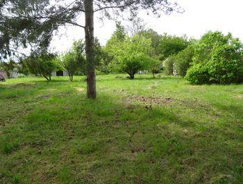 terrain à Faverolles-et-Coëmy (51)