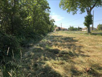 terrain à Montgeard (31)