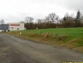 terrain à Saint-Rémy-du-Plain (35)