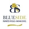BLUE SIDE - Propriétés et Domaines Viticoles