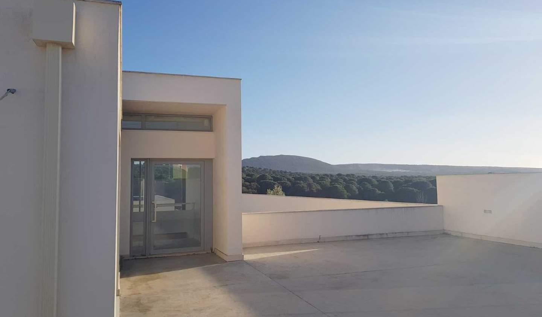 Maison avec terrasse Azeitão