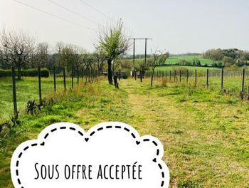 terrain à Saint-Rémy-en-Mauges (49)