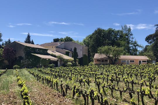Vineyard with pool and outbuildings