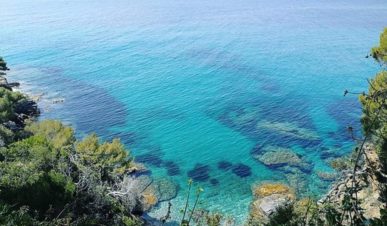 Propriété Rayol-Canadel-sur-Mer