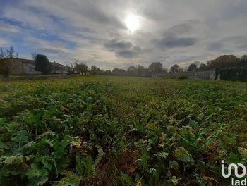 terrain à Saint-Martial-de-Vitaterne (17)