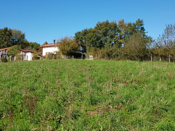 Vente terrain 13032 m2