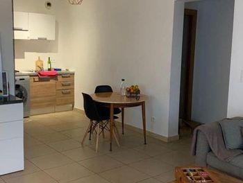 appartement à Sant'Andréa-di-Cotone (2B)