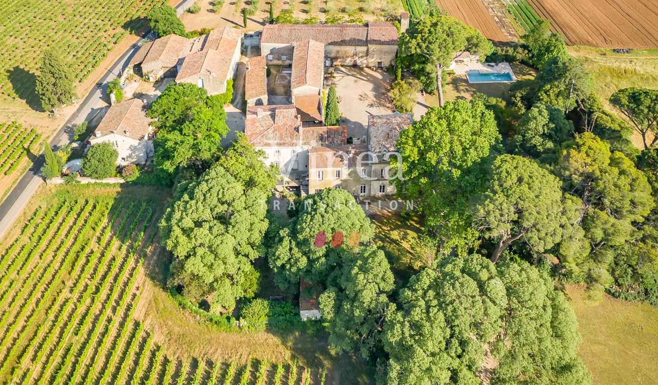 Vineyard with pool and outbuildings Montpellier
