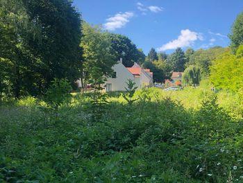 terrain à Janville-sur-Juine (91)