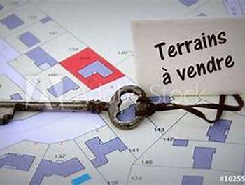 terrain à Saint-Martin-de-Crau (13)