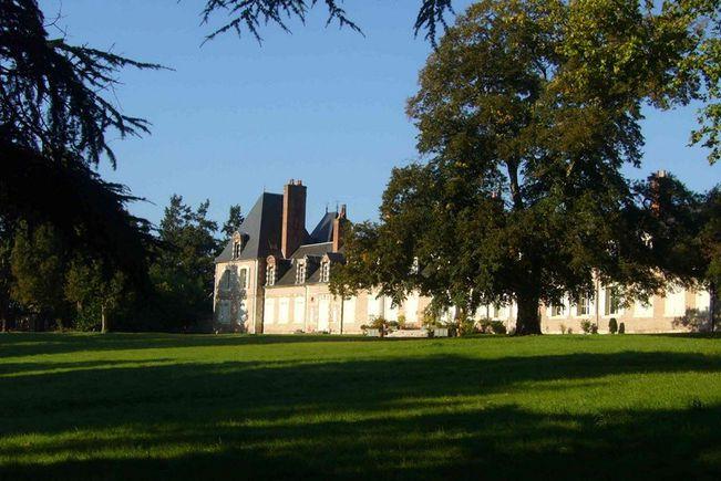 Château, Salbris