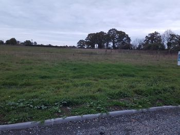 terrain à Crollon (50)