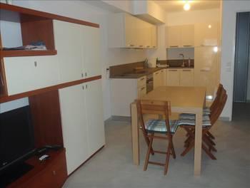 Appartement meublé 2 pièces 43,8 m2