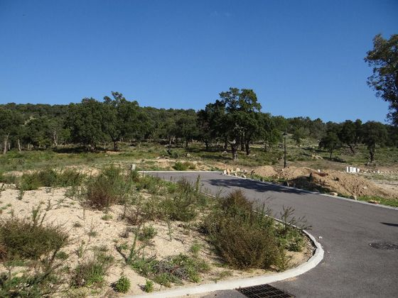 Vente terrain 3136 m2